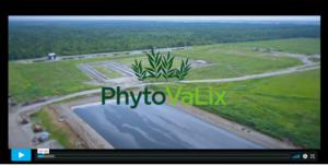 Ecran d'accueil de la vidéo de présentation du projet PhytoVaLix.